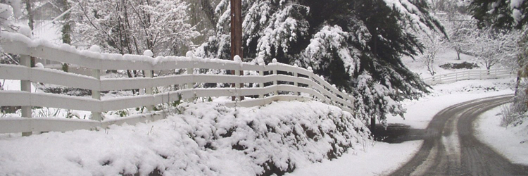 snow_and_fence