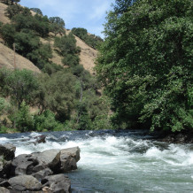 "Mokelumne River SB 1199 ""wake"" Friday"